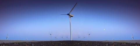 Het landbouwbedrijf van de windturbine met blauwe hemel Stock Afbeelding