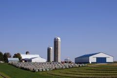 Het Landbouwbedrijf van het hooi Stock Foto's