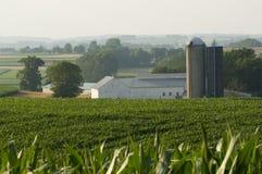 Het landbouwbedrijf van het land Royalty-vrije Stock Foto