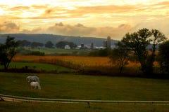 Het landbouwbedrijf van het land en gloeiende hemel royalty-vrije stock afbeelding
