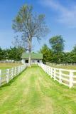 Het landbouwbedrijf van het paard Stock Foto's