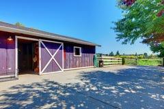 Het landbouwbedrijf van het paard dat in purple op Amerikaans landbouwbedrijf wordt afgeworpen. Royalty-vrije Stock Foto