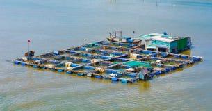 Het landbouwbedrijf van het vissenfokken in zuidelijk Vietnam op rivier Stock Fotografie