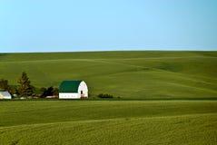 Het Landbouwbedrijf van Palouse stock afbeelding