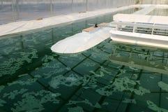 Het landbouwbedrijf van Spirulina royalty-vrije stock afbeeldingen
