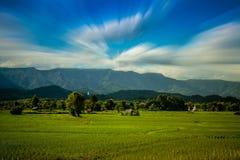 Het landbouwbedrijf van Thai Royalty-vrije Stock Afbeeldingen