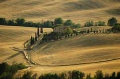 Het landbouwbedrijf van Toscanië onder gouden heuvels en cipressen Royalty-vrije Stock Afbeelding