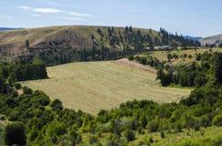 Het landbouwbedrijfgebieden van het land Stock Afbeelding