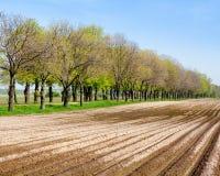 Het landbouwbedrijflandschap van het land - geploegde gebied en bomen Royalty-vrije Stock Foto's