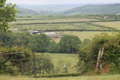 Het landbouwbedrijfleven Royalty-vrije Stock Fotografie
