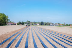 Het landbouwwerk Stock Afbeelding