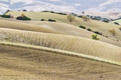 Het landelijke landschap van basilicata Royalty-vrije Stock Foto