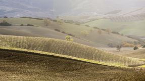 Het landelijke landschap van basilicata Stock Fotografie