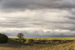 Het landelijke landschap van basilicata Stock Afbeeldingen