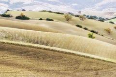 Het landelijke landschap van basilicata Stock Afbeelding