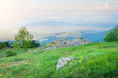 Het landelijke landschap van de de lente mistige ochtend. royalty-vrije stock foto