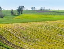 Het landelijke landschap van de de lentetijd royalty-vrije stock afbeeldingen
