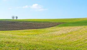 Het landelijke landschap van de de lentetijd stock foto