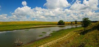 Het landelijke landschap van de de zomerrivier Stock Foto