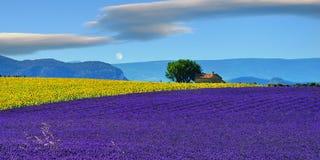 Het landelijke landschap van de Provence Royalty-vrije Stock Foto