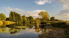 Het landelijke landschap van zonsondergangganzen Stock Afbeelding