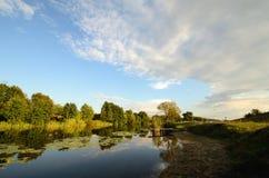 Het landelijke landschap van zonsondergangganzen Stock Fotografie