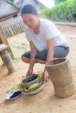 Het landelijke leven en landbouwgrond in Indonesië Stock Foto's