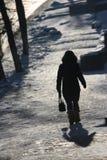 Het landelijke silhouet van de winter Stock Foto