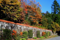 Het Landgoed van Biltmore Stock Afbeelding
