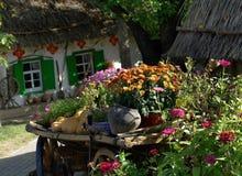 Het landontwerp van de tuin Royalty-vrije Stock Foto's