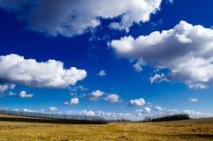 Het landschap. Stock Afbeeldingen