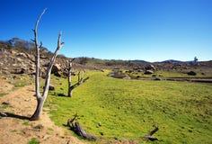 Het Landschap Australië van het land Royalty-vrije Stock Fotografie