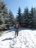 Het landschap Beskydy van de berg Royalty-vrije Stock Fotografie