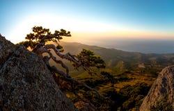 Het landschap de Krim van de schoonheidsaard Stock Foto's