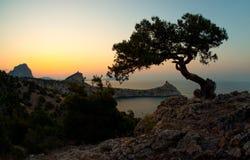 Het landschap de Krim van de schoonheidsaard Royalty-vrije Stock Foto's
