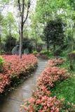 Het landschap in lingyunberg in Sichuan, China Royalty-vrije Stock Foto