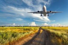 Het landschap met passagiersvliegtuig vliegt in de blauwe hemel Stock Afbeelding