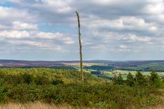 Het landschap in Noord-York legt vast Stock Afbeeldingen