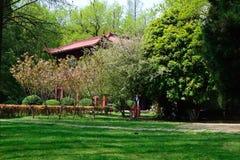 Het landschap in het park Stock Foto's