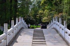 Het landschap in het park Royalty-vrije Stock Foto's