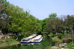 Het landschap in het park Stock Afbeeldingen