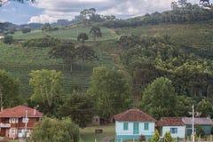 Het landschap in Rio Grande doet Sul Stock Afbeeldingen