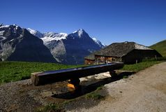 Het landschap van alpen op gebied Jungfrau Royalty-vrije Stock Afbeeldingen