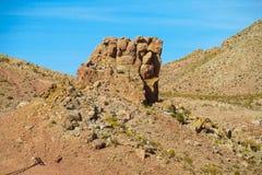 Het landschap van Altiplano Royalty-vrije Stock Fotografie