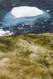 Het landschap van Antarctica Stock Foto