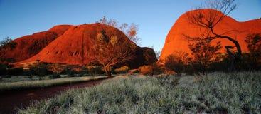 Het Landschap van Australië: Alice Spring stock fotografie