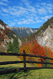 Het landschap van Autum, Roemenië Stock Foto's