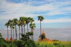 Het landschap van Bagan Stock Afbeelding