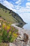 Het landschap van Baikal Royalty-vrije Stock Foto's