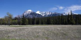 Het Landschap van Banff Stock Foto